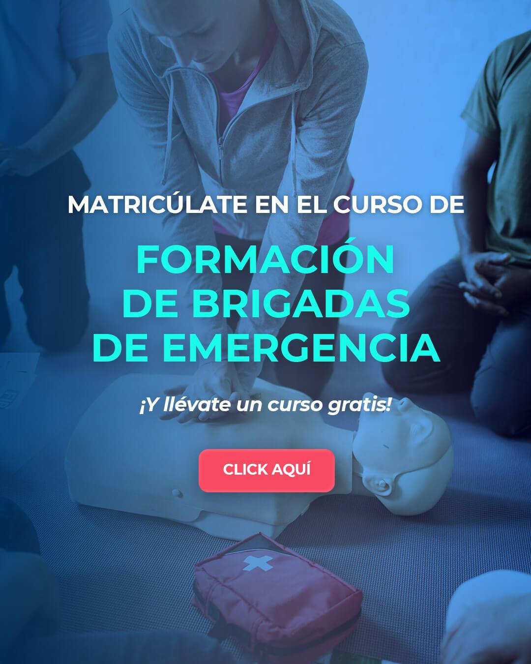 cursos-brigadas-de-emergencia-mobile